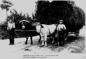 Bis weit in das 19. Jahrhundert hinein war Sand ein von der Landwirtschaft geprägtes Dorf. Inzwischen hat es sich zu einer Winzergemeinde gewandelt.